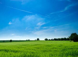 Ubezpieczenie OC dla rolników